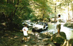 Yes we let Jeeps ride with us. Mike at the creek crossing on Trail 5